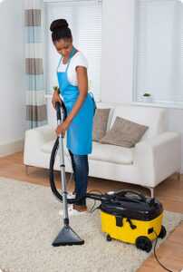 Non Toxic, Natural, Pet Friendly Upholstery and Carpet Cleaning