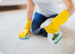 All Natural Carpet Care