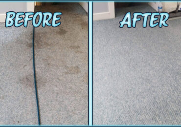 Clean Carpet Service Back To Brand New with Masters Carpet Cleaning