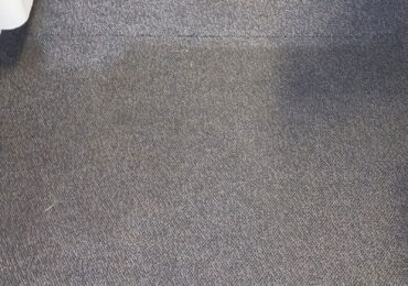 Masters Carpet Care Scrub and Sanitization for Rugs, Upholstery,Carpets and Leather